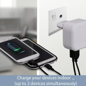 Wall and car charger- Dual USB